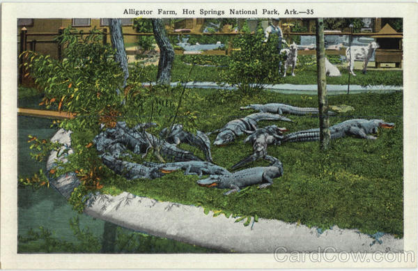 Alligator Farm, Hot Springs National Park Arkansas