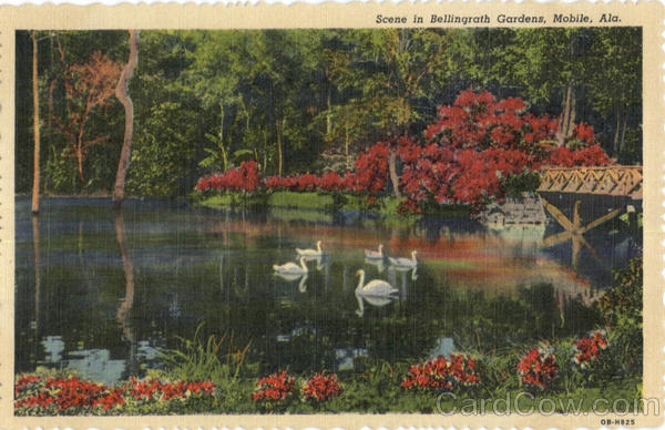 Scene In Bellingrath Gardens Mobile AL