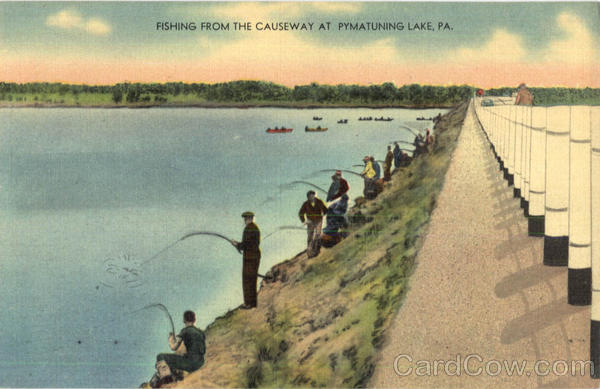 Fishing from the causeway pymatuning lake pa for Fishing lakes in pa