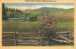 Greetings From Pennsburg Postcard