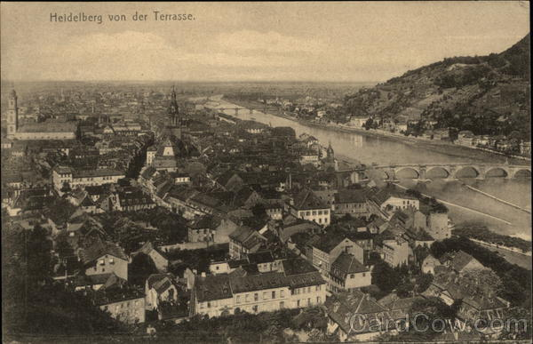 View of Town from the Terrace Heidelberg Germany