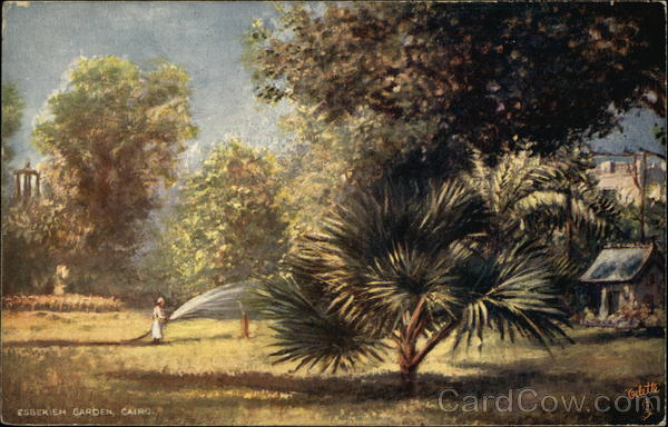 Ezbekiah Gardens Cairo Egypt Oilette Africa