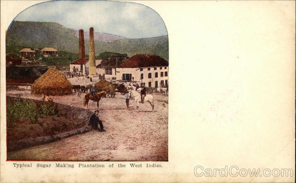 Typical Sugar Making Plantation of the West Indies