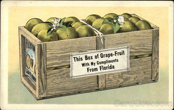 This Box of Grapefruit With my Compliments from Florida