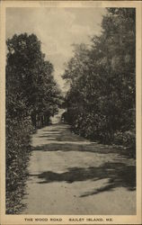 The Wood Road