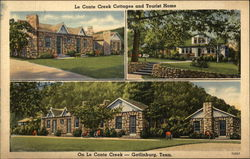 Le Conte Creek Cottages and Tourist Home