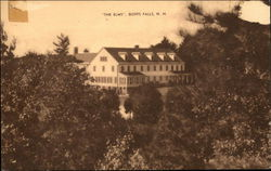 Tree Line View of The Elms Postcard