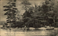 Hornet's Cove, Wellington Reservation, Newfound Lake