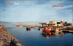 Greetings from Salton Sea