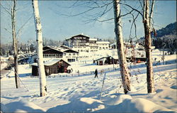 Snow Clad Mittersill Alpine Inn and Chalets