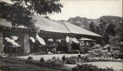 The Waioli Tea Room