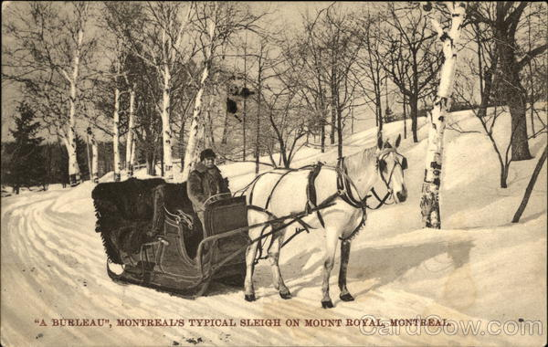 A Burleau, Montreal's Typical Sleigh on Mt. Royal Canada