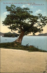 The Old Oak, the Island, and Mile Point on Meredith Bay