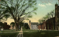 The Campus at Yale Universtiy