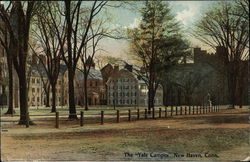 "The ""Yale Campus"""