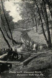 Shady Walk , Glenwood House Postcard
