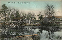Old Mill, Surry Road