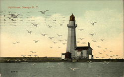 Sea Gulls Flying around Lighthouse