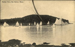 Harbor View of Sail Boats