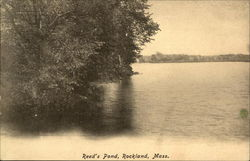 Reed's Pond