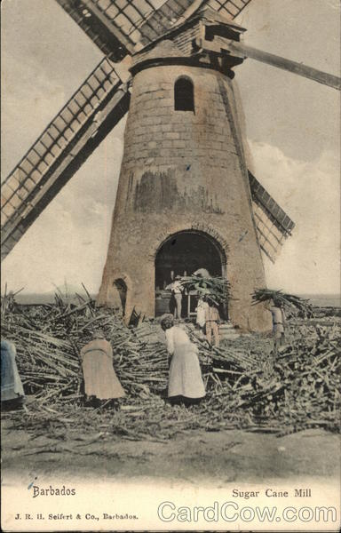 Workers at a Sugar Cane Mill Barbados Caribbean Islands