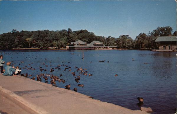 Norumbega Park - Duck Feeding Time Auburndale, MA Postcard