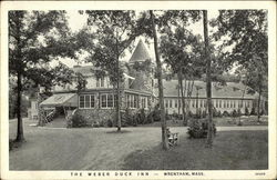 The Weber Duck Inn Postcard