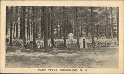 Group at Camp Tevya
