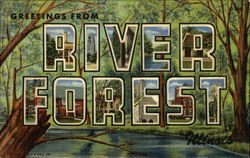 Greetings from River Forest, Illinois - Selected Views Postcard