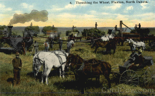 Threshing The Wheat Flaxton North Dakota