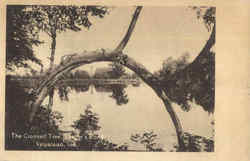 The Crooked Tree, Saager's Pond