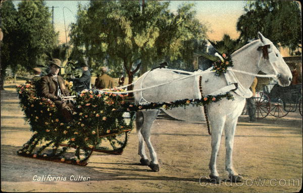 California Cutter Decorated in Roses Horses