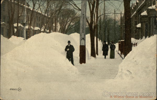 A Winter Scene in the Snow Montreal Canada Misc. Canada