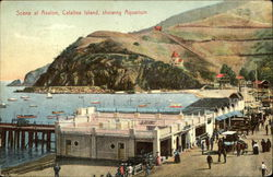 Scene at Avalon, Showing Aquarium