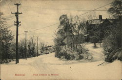 Pine Avenue in Winter