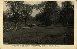 Brook Through Pasture