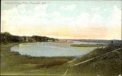 Head of Corsica River