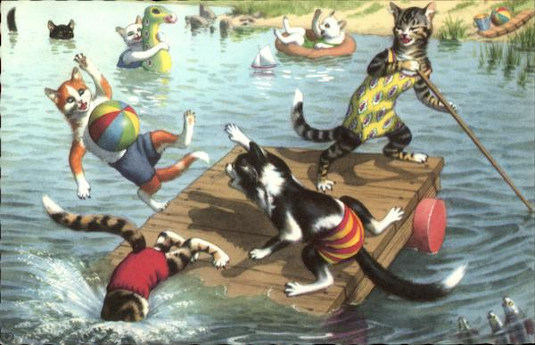 Cats Playing Water Games