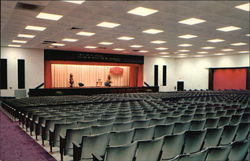 Auditorium, Jehova's Witnesses' Assembly Hall Postcard