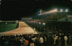 Grayhound Racetrack at Night