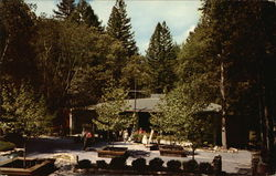 View of Auditorium Mount Hermon, CA Postcard