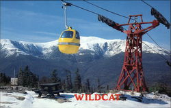 Wildcat Gondola and Mt. Washington