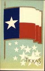 Texas State Flag Serigraph