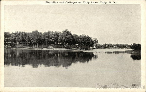 Shoreline and Cottages on Tully Lake New York
