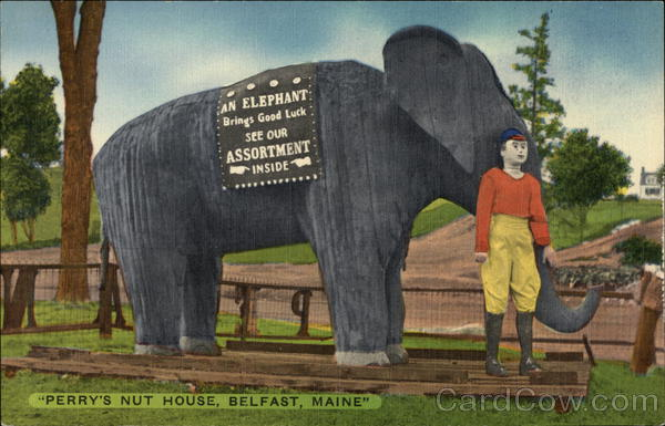 Perry's Nut House Belfast Maine Elephants