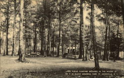 Campgrounds at Memorial Park