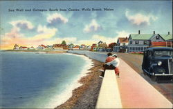 Sea Wall and Cottages