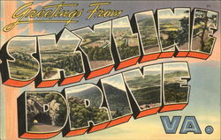 Greetings from Skyline Drive Postcard