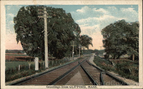 Tree Lines RR Track - Greetings Clifford Massachusetts