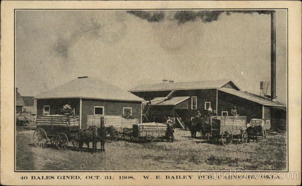 40 Bales Ginned Carnegie Oklahoma